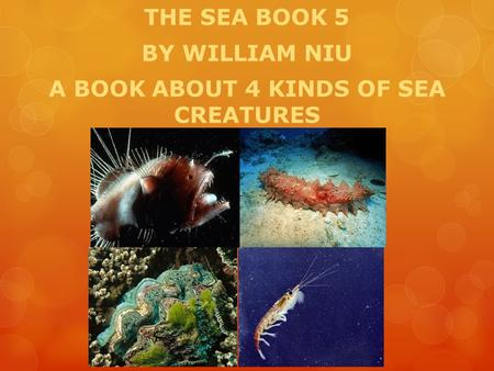 THE SEA BOOK 5 BY WILLIAM NIU A BOOK ABOUT 4 KINDS OF SEA CREATURES.
