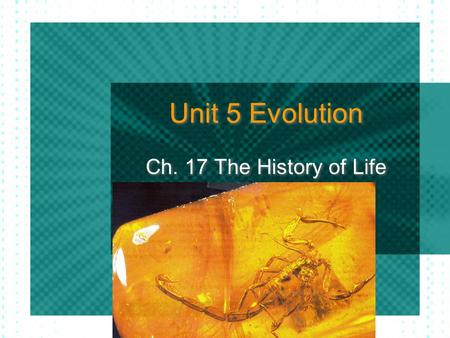 Unit 5 Evolution Ch. 17 The History of Life. Fossils & Ancient Life Paleontologists - scientists that study fossils From fossils, scientists can infer.