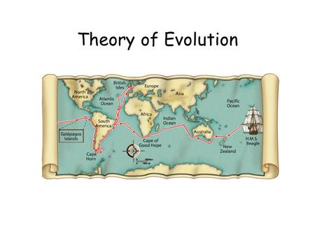 Theory of Evolution. WRITE A DEFINITION: gradual change over time; the process by which modern organisms have descended from ancient organisms a well-supported.
