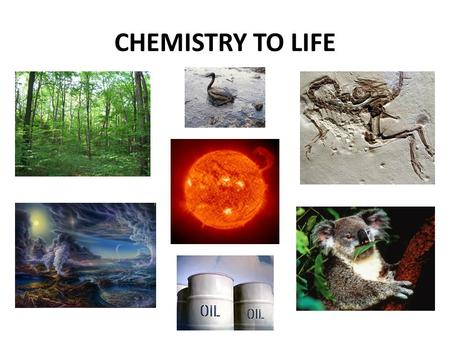 CHEMISTRY TO LIFE. Producers Another name for producers? AUTOTROPHS!