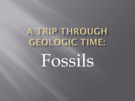 A Trip through Geologic Time: