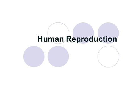 "Human Reproduction. Review Both males and females produce specialized sex cells called ""gametes."" Both males and females produce specialized sex cells."