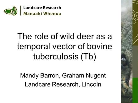 The role of wild deer as a temporal vector of bovine tuberculosis (Tb) Mandy Barron, Graham Nugent Landcare Research, Lincoln.