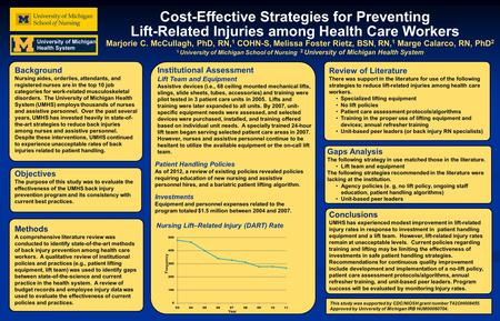 Cost-Effective Strategies for Preventing Lift-Related Injuries among Health Care Workers Marjorie C. McCullagh, PhD, RN, 1 COHN-S, Melissa Foster Rietz,