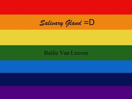 Salivary Gland = D Bailie Van Leuven. Focus! What are the different types of salivary glands? What does saliva do?