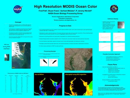 High Resolution MODIS Ocean Color Fred Patt 1, Bryan Franz 1, Gerhard Meister 2, P. Jeremy Werdell 3 NASA Ocean Biology Processing Group 1 Science Applications.