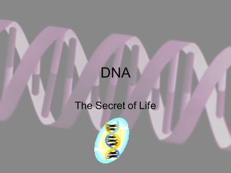 DNA The Secret of Life. Deoxyribonucleic Acid DNA is the molecule responsible for controlling the activities of the cell It is the hereditary molecule.