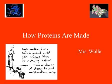 How Proteins Are Made Mrs. Wolfe. DNA: instructions for making proteins Proteins are built by the cell according to your DNA What kinds of proteins are.