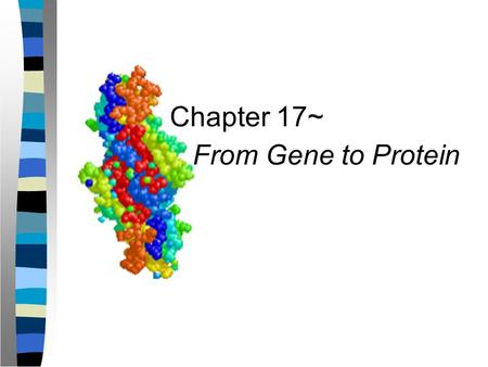 Chapter 17~ From Gene to Protein.
