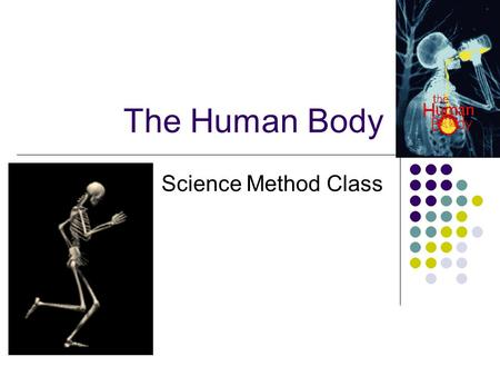 The Human Body Science Method Class. The Body's System Cells: the basic unit or building block of all living things (blood cell, muscle cell, bone cell,