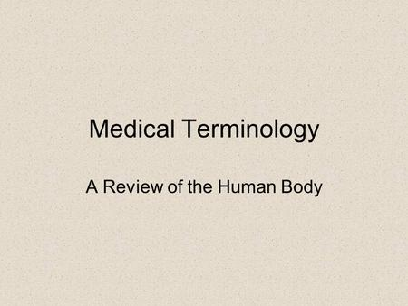 Medical Terminology A Review of the Human Body. The Anatomical Position - erect standing position - feet slightly separated - arms hanging relaxed at.