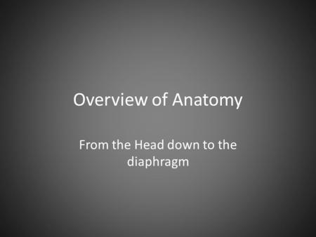 Overview of Anatomy From the Head down to the diaphragm.