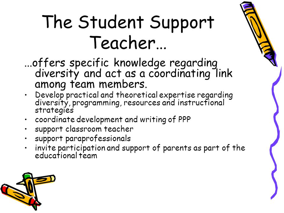 The SST cont'd… team teach with classroom teacher provide individual or small group tutorial as required (directly teach skills that will assist students in becoming more independent) coordinate community-based education and work education ensure transition plans are developed and carried out effectively liaise with outside support agencies and personnel advocate for students