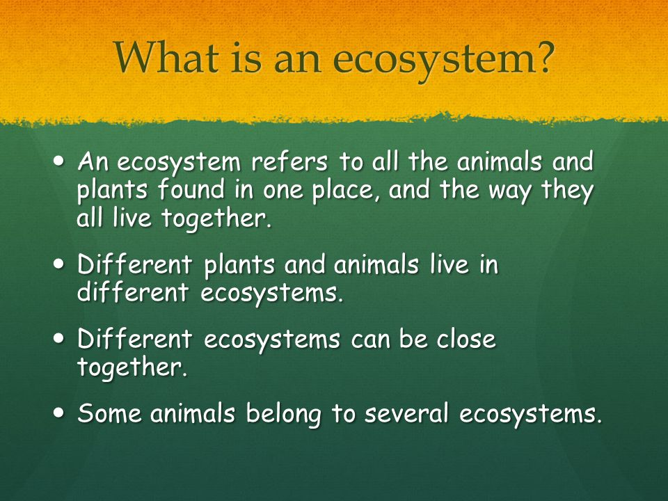 What are the Components Earth's biodiversity.
