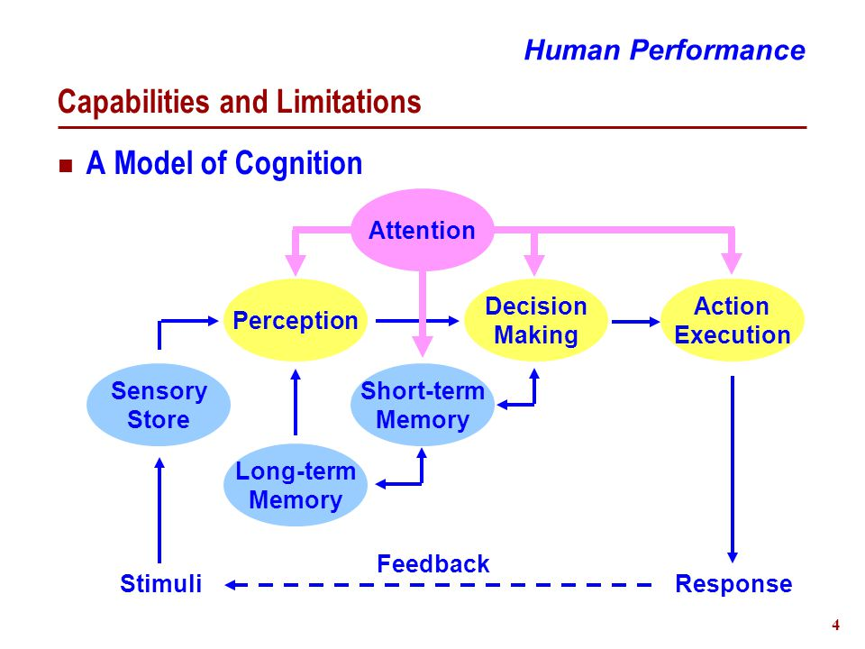 5 Capabilities and Limitations Perception Function  Feature and change detection  Pattern recognition Modalities - Independent Auditory Operation  Autonomic - No conscious attention  Representation capture - Quickly overwritten Human Performance Visual
