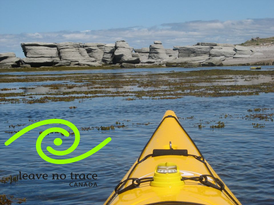 What is Leave No Trace Canada  National non-profit charitable organization  Branch – Leave No Trace Center for Outdoor Ethics Vision:  To take the lead role in addressing and mitigating recreational impacts on Canada's wilderness and natural area recreation resources.