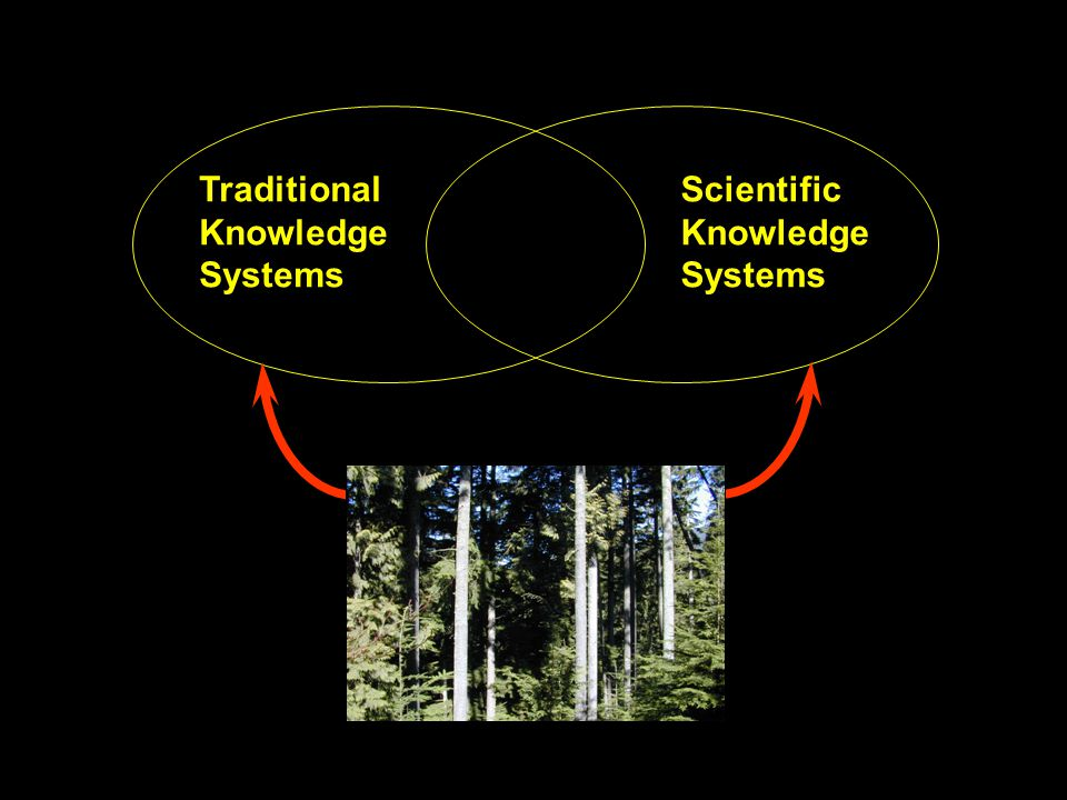 Traditional Knowledge Systems Scientific Knowledge Systems ?