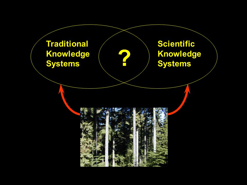 The generation of testable ideas is a point of contact between the scientific process and Indigenous People's Knowledge.