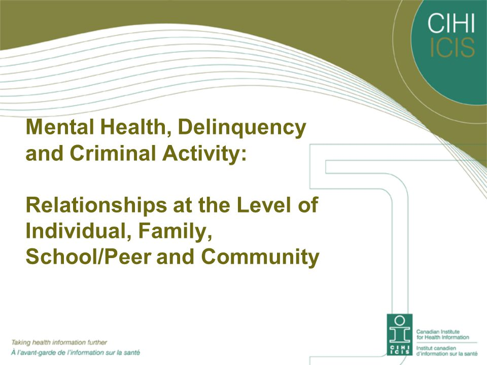 Mental Health, Delinquency and Criminal Activity: Individual Level INDIVIDUAL LEVEL Protective Factors High levels of optimism, life satisfaction and emotional capability Trustworthiness Sense of belonging Greater self-efficacy / High self-esteem Risk Factors Low self-worth Hyperactivity Depression Victim of bullying, assault, threats, theft