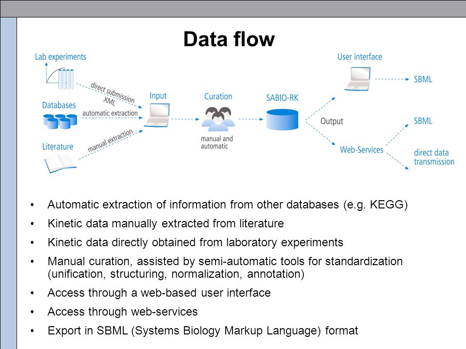 Automatic input (XML based) SABIO-RK Database of experimental raw data Storage of kinetic data (e.g.