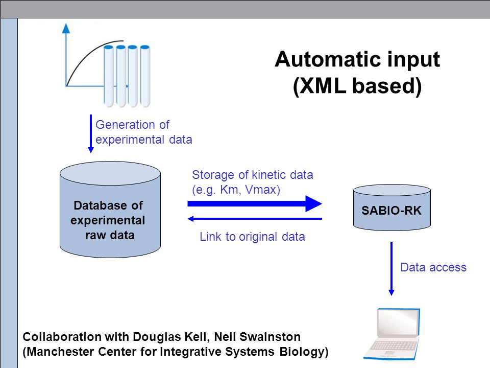 Manual data input Kinetic data from publications Tables, Formula, Graphs, Pictures Some assay conditions or methods description only noted as reference No controlled vocabulary in the literature (different names of compounds, enzymes etc.) Missing or incomplete information -Incomplete reactions (e.g.