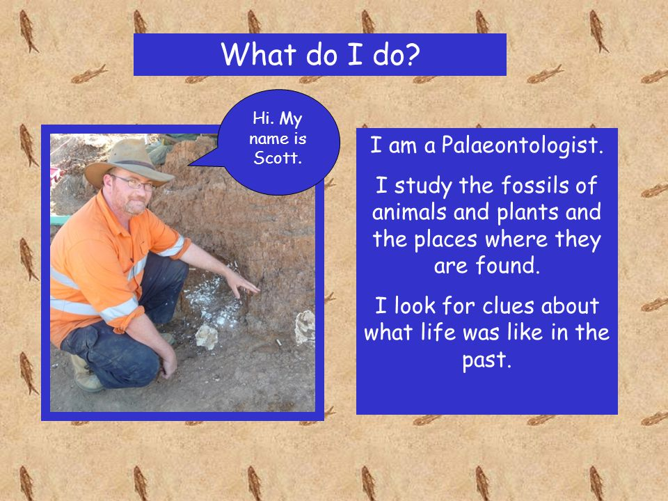 Where do I work.I work outside at dig sites. I work inside at the Queensland Museum.