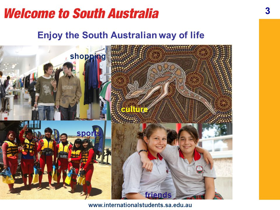 Settling In www.internationalstudents.sa.edu.au your local area homesickness transport 4