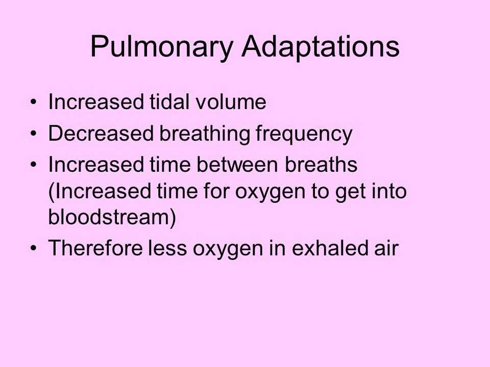 Summary Need to know –Cardiac and pulmonary Structure and Function Veins/arteries/cappilaries Flow of blood through the heart Alveoli bronchii etc Flow of inspired air and pulmonary exchange –Acute adaptations to exercise –Chronic adaptations to exercise
