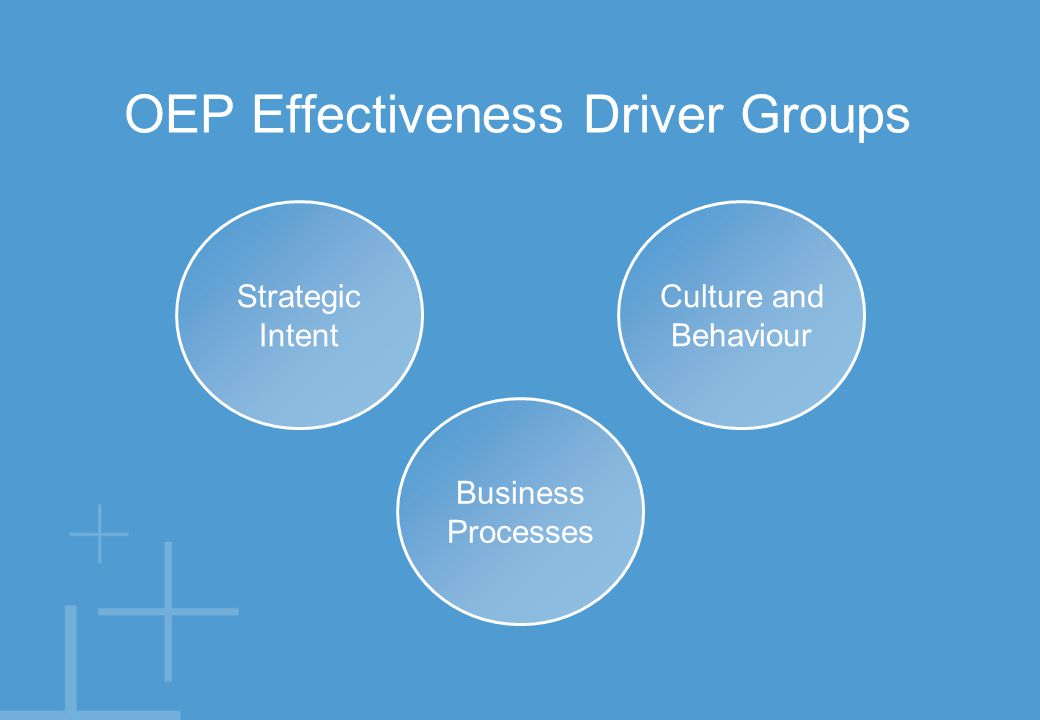 The organisation's purpose & vision.Strategy. Business plan & objectives.