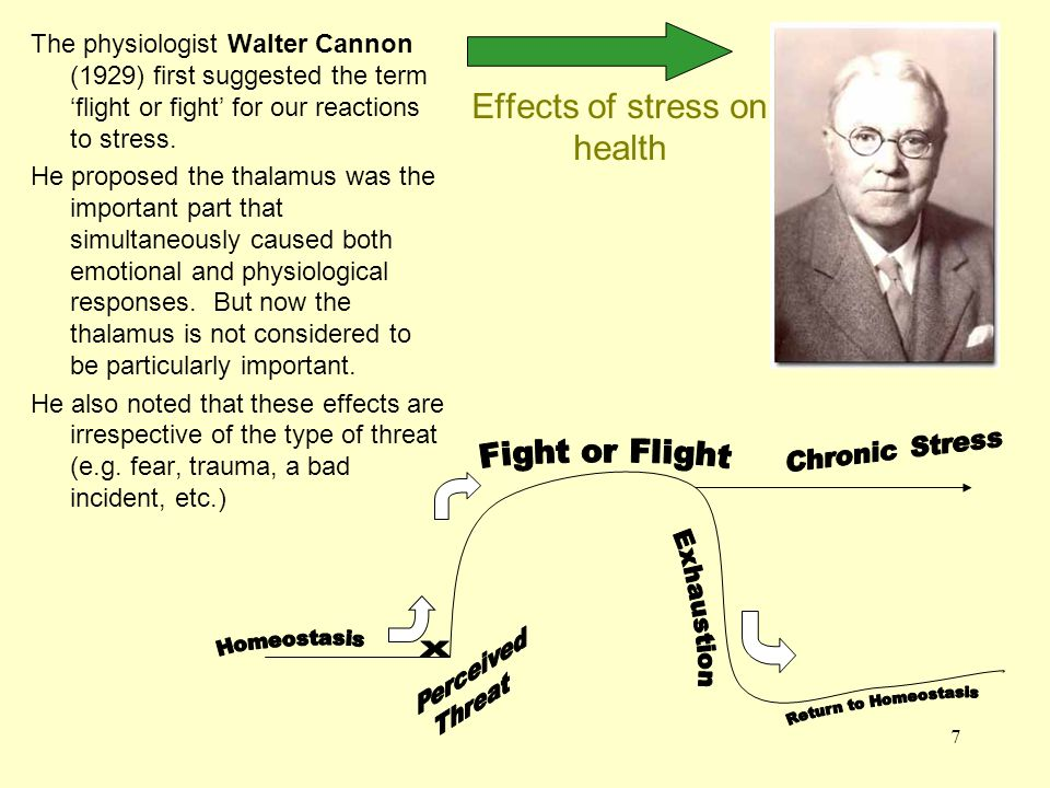 8 Effects of stress on health General Adaptation Syndrome (GAS) – Hans Selye (1907-1982) Selye was an Hungarian-born Canadian.