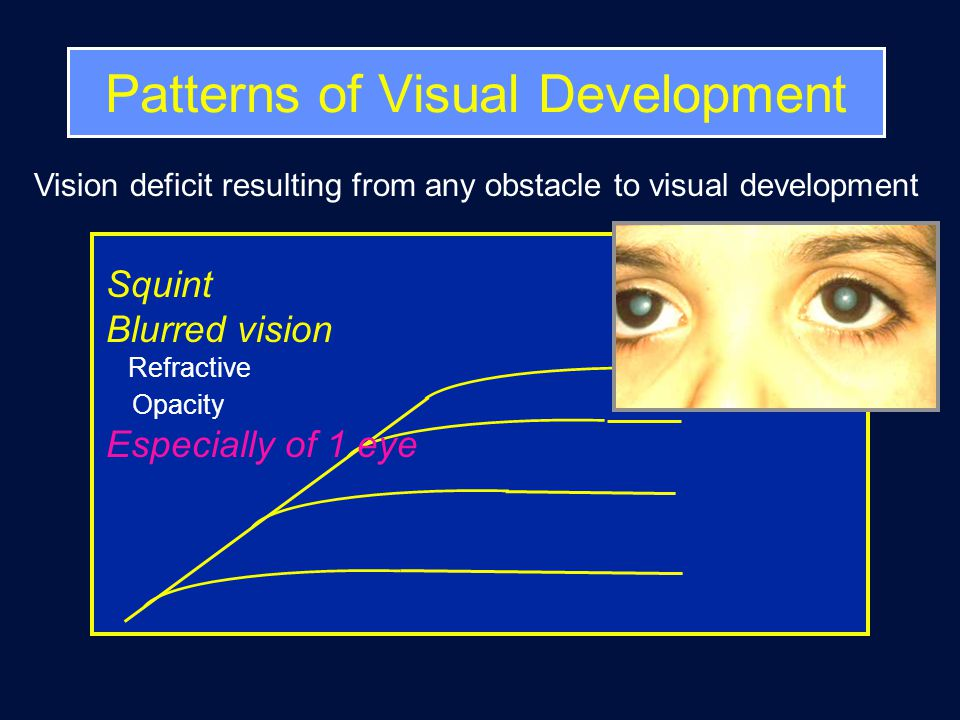 Impact of VI on the Child Visual functions Cognitive –Perception of objects in their totality & in environment –Spatial and intermodal interaction impaired Motor development - complex Language Social play, social interaction Poor self-concept & low self-esteem Other behaviours - eg sleep Education, leisure, social, health