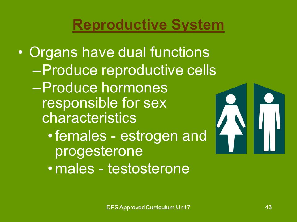 DFS Approved Curriculum-Unit 744 Common Disorders of the Reproductive System Rectocele and cystocele – hernias –rectocele - weakening of wall between vagina and rectum constipation results hemorrhoids form –cystocele - weakening of wall between urethra and vagina causes urinary incontinence