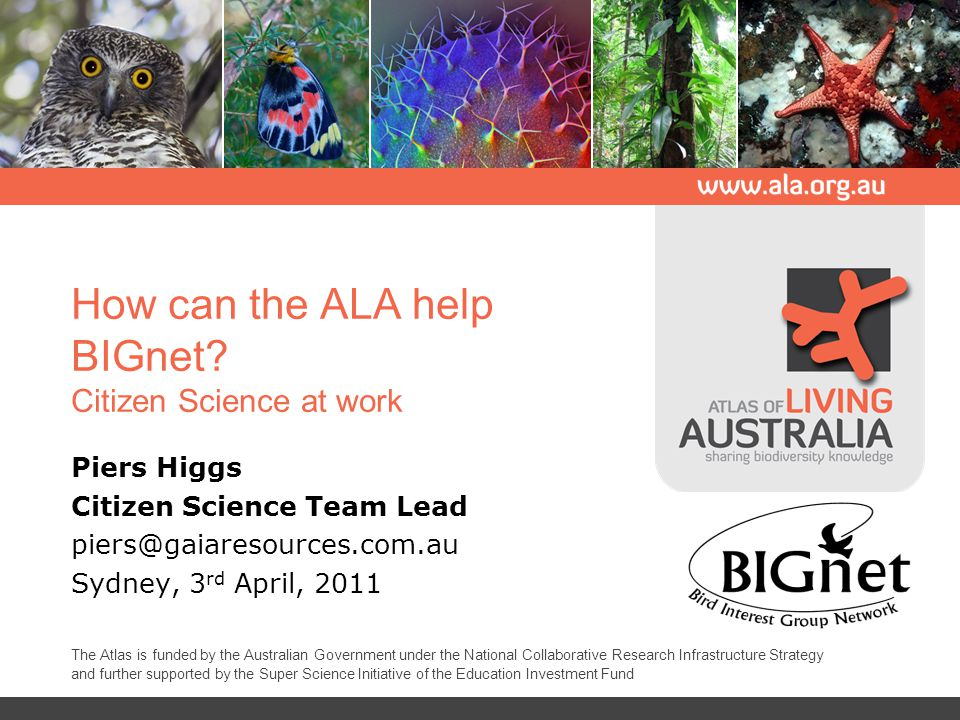 Overview An introduction to the Atlas of Living Australia (ALA) The ALA's Citizen Science project The ALA's Citizen Science solution Where to from here.
