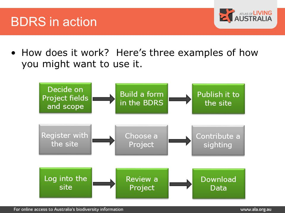 BDRS in action Decide on Project fields and scope Build a form in the BDRS Publish it to the site