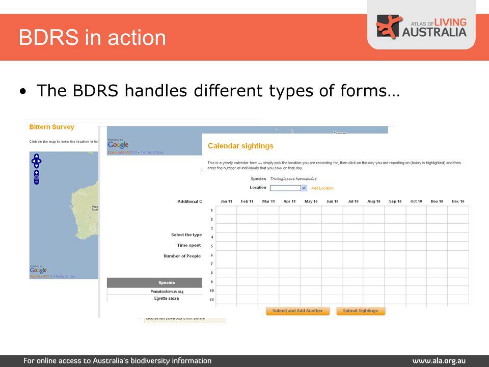 BDRS in action Register with the site Choose a Project Contribute a sighting