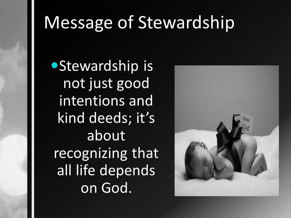 Message of Stewardship Stewardship is not an annual campaign to induce people to contribute to another charity; it's about transformed visions, changed attitudes and altered living.