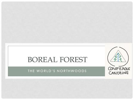 THE WORLD'S NORTHWOODS BOREAL FOREST. LOCATION FEATURES Characterized by coniferous forests consisting mostly of pines, spruces, and larches Large biodiversity.