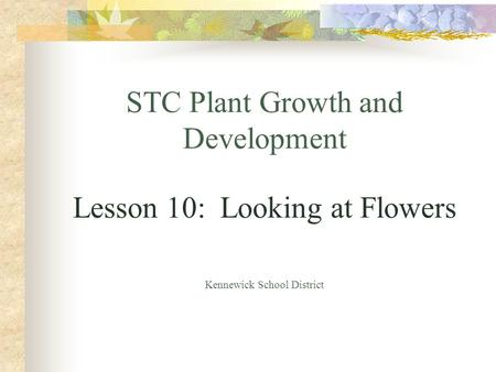 STC Plant Growth and Development Lesson 10: Looking at Flowers Kennewick School District.
