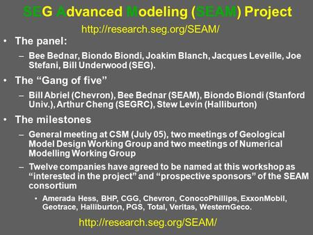 SEG Advanced Modeling (SEAM) Project  The panel: –Bee Bednar, Biondo Biondi, Joakim Blanch,