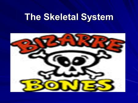 The Skeletal System. Formation of Bone When you are developing as a baby, your bone starts as cartilage. As development continues, blood vessels stimulate.