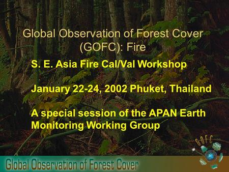 Global Observation of Forest Cover (GOFC): Fire S. E. Asia Fire Cal/Val Workshop January 22-24, 2002 Phuket, Thailand A special session of the APAN Earth.