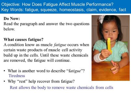Objective: How Does Fatigue Affect Muscle Performance