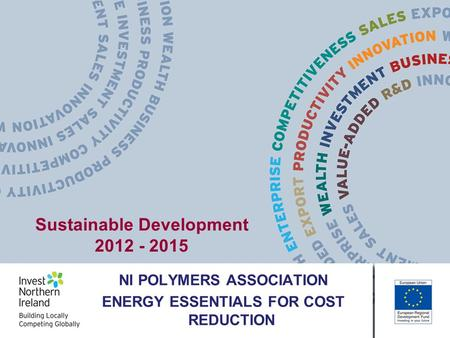 NI POLYMERS ASSOCIATION ENERGY ESSENTIALS FOR COST REDUCTION Sustainable Development 2012 - 2015.