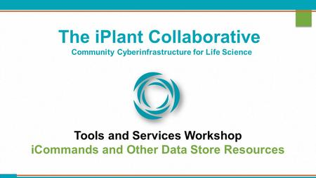 The iPlant Collaborative Community Cyberinfrastructure for Life Science Tools and Services Workshop iCommands and Other Data Store Resources.
