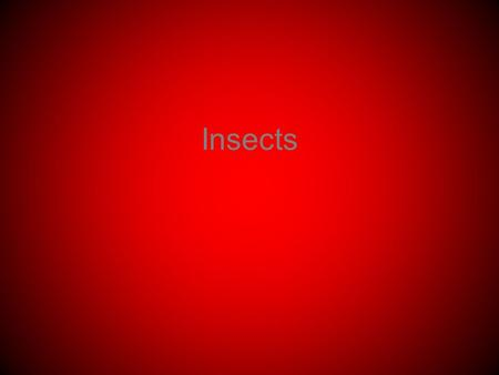 Insects. Know your taxonomy Kingdom Animalia Phylum Arthropoda Subphylum Uniramia Class Insecta.