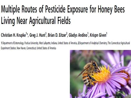 "Some Crops pollinated by Bees The honeybee is nature's workhorse — and we took it for granted... We've hung our own future on a thread"" Prof. E.O. Wilson."