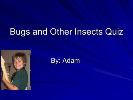 Bugs and Other Insects Quiz By: Adam. Question 1 Name the 3 body parts of an insect. A head A thorax An abdomen Challenge Question What else do you know.