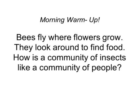 Morning Warm- Up! Bees fly where flowers grow. They look around to find food. How is a community of insects like a community of people?