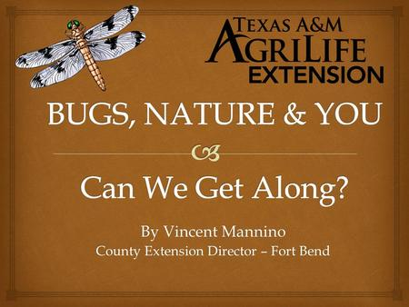 By Vincent Mannino County Extension Director – Fort Bend.
