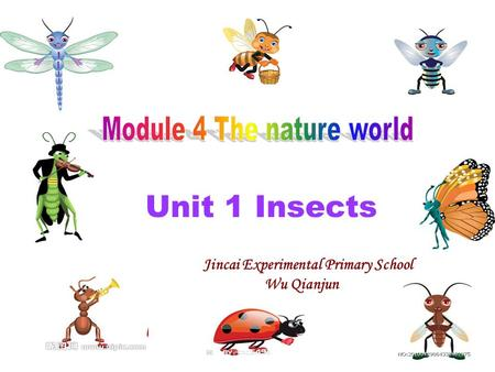 Unit 1 Insects Jincai Experimental Primary School Wu Qianjun.